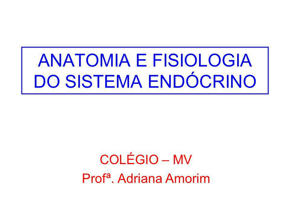 ANATOMIA E FISIOLOGIA DO SISTEMA ENDÓCRINO - ppt video online carregar