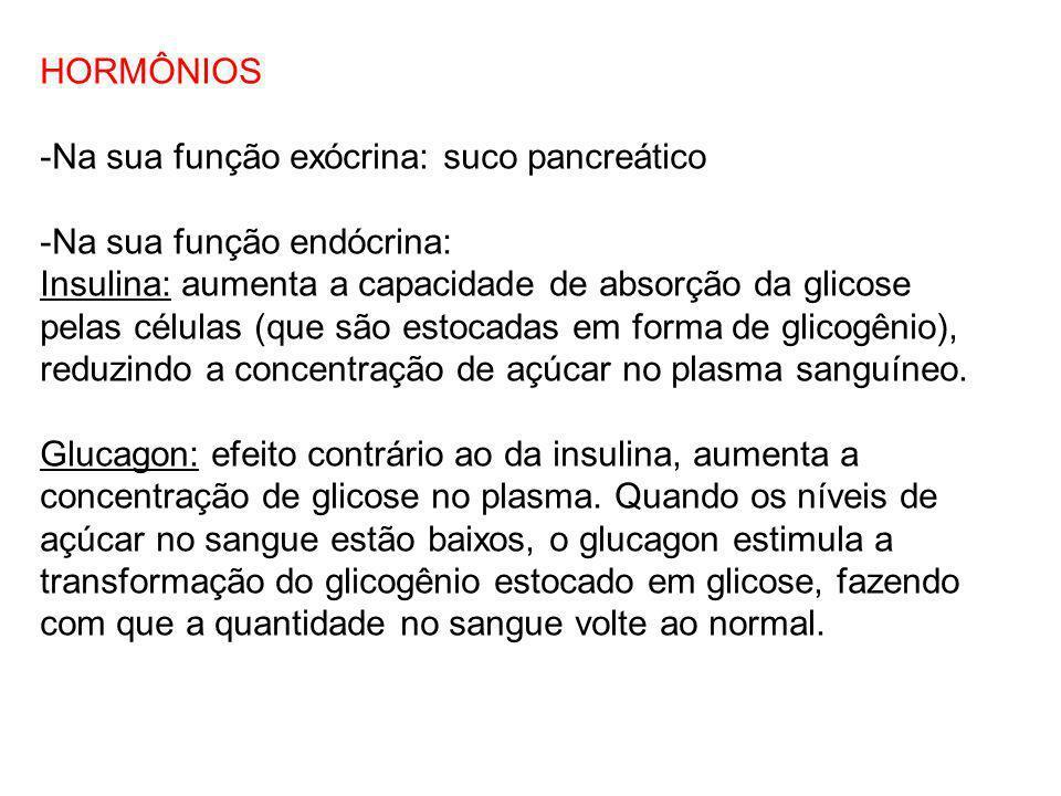 HORMÔNIOS -Na sua função exócrina: suco pancreático. -Na sua função endócrina: