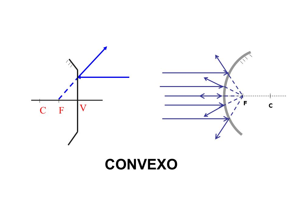 C F V F C CONVEXO