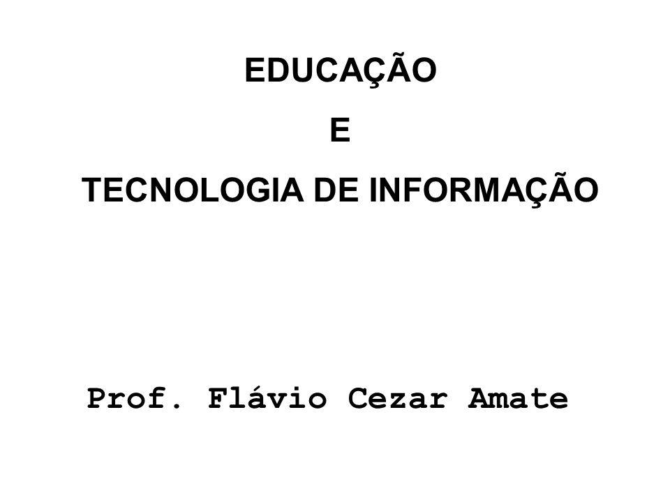 TECNOLOGIA DE INFORMAÇÃO Prof. Flávio Cezar Amate