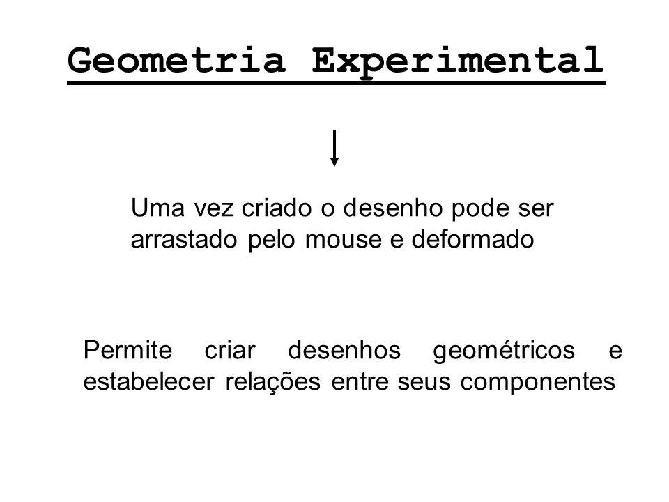 Geometria Experimental