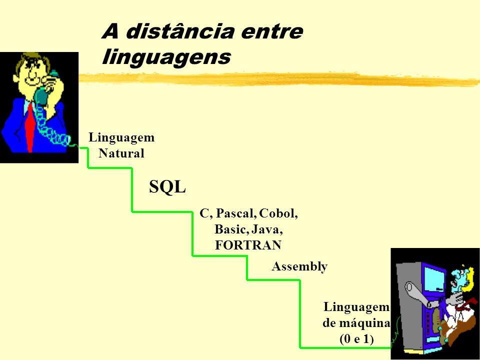 A distância entre linguagens