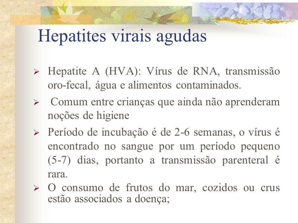 Hepatites virais agudas