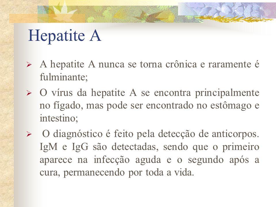 Hepatite A A hepatite A nunca se torna crônica e raramente é fulminante;