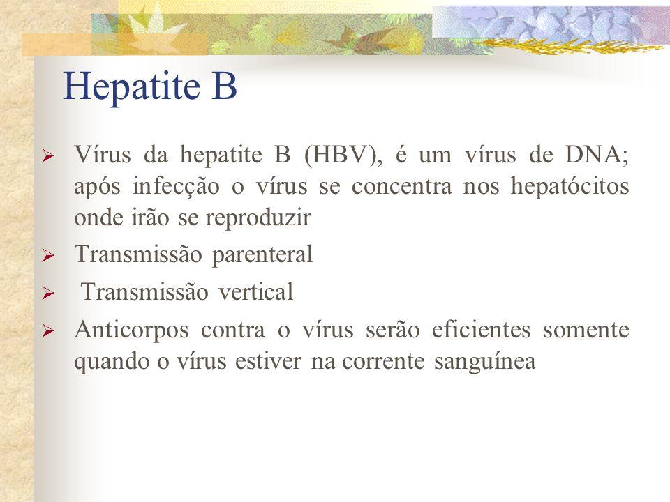 Hepatite B Vírus da hepatite B (HBV), é um vírus de DNA; após infecção o vírus se concentra nos hepatócitos onde irão se reproduzir.