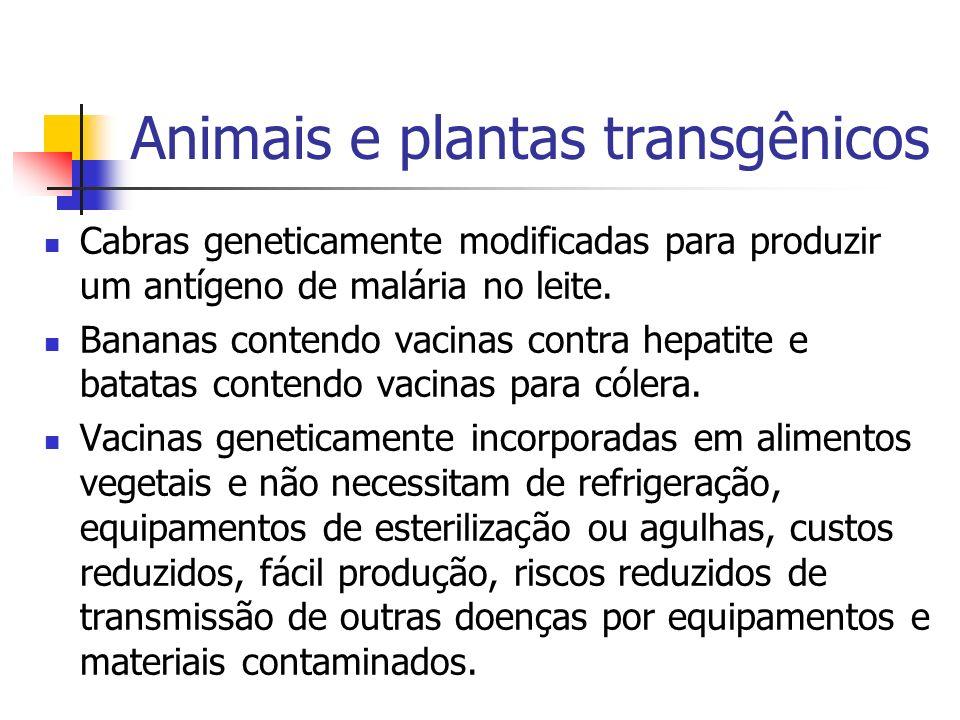 Animais e plantas transgênicos
