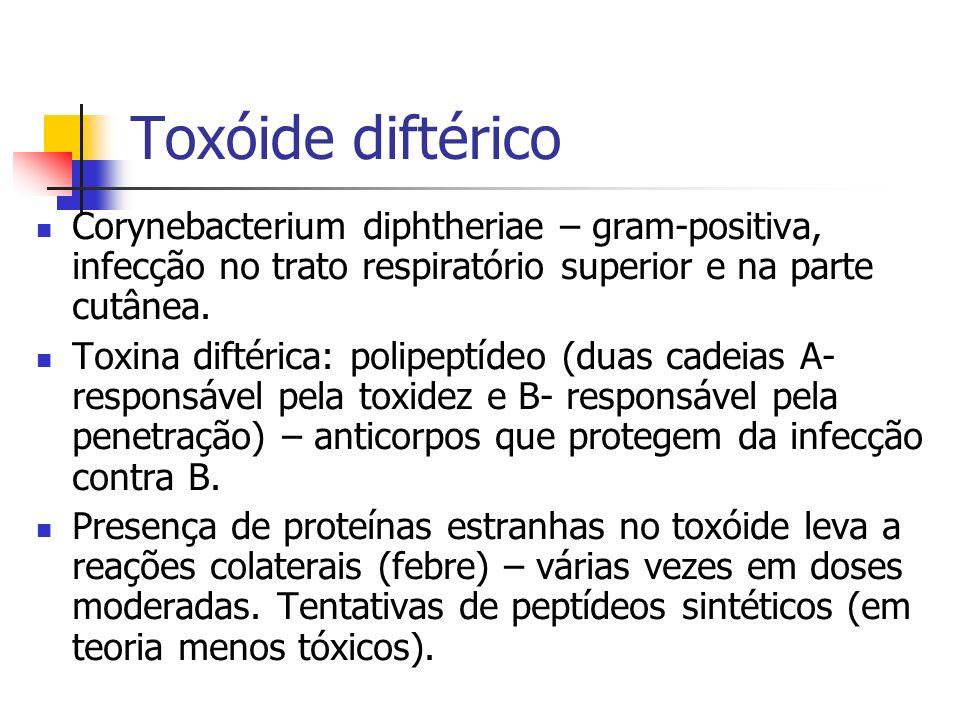 Toxóide diftérico Corynebacterium diphtheriae – gram-positiva, infecção no trato respiratório superior e na parte cutânea.