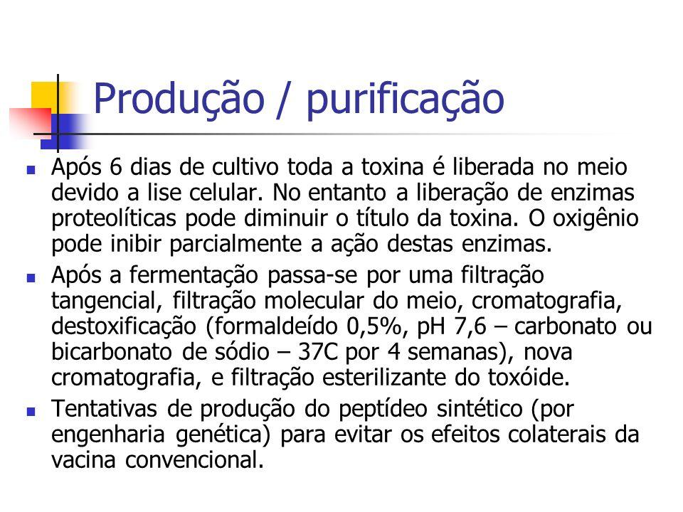 Produção / purificação