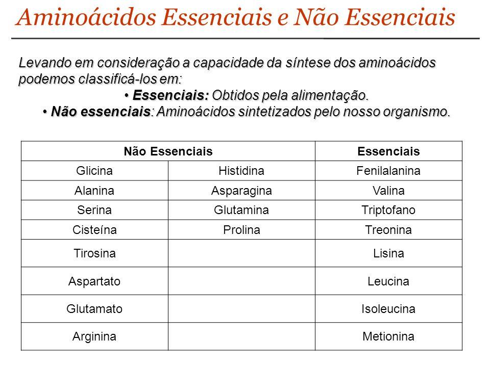 Aminoácidos Essenciais e Não Essenciais