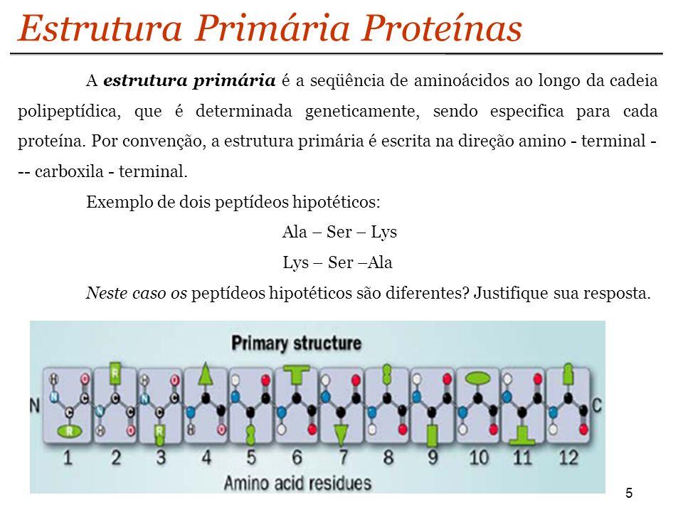 Estrutura Primária Proteínas