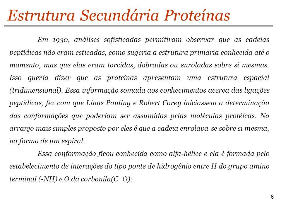 Estrutura Secundária Proteínas