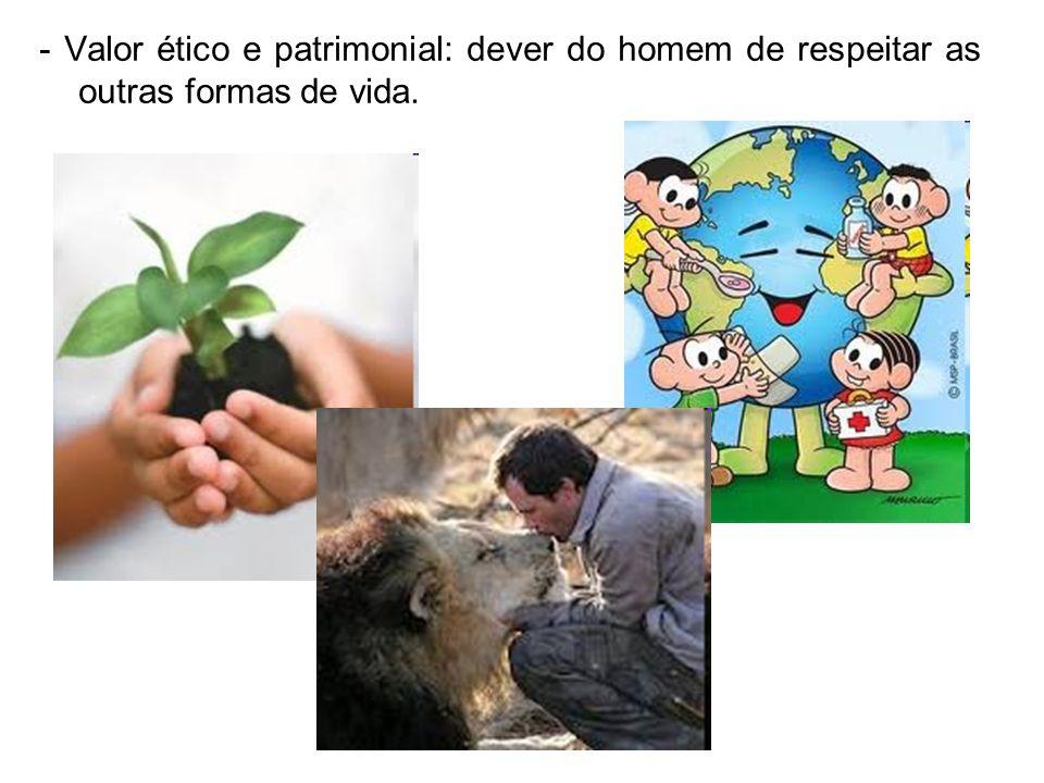 - Valor ético e patrimonial: dever do homem de respeitar as outras formas de vida.