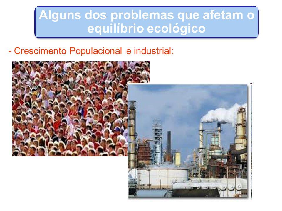 Alguns dos problemas que afetam o equilíbrio ecológico