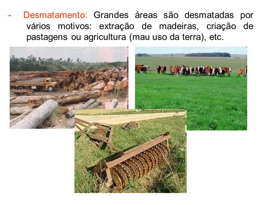 - Desmatamento: Grandes áreas são desmatadas por vários motivos: extração de madeiras, criação de pastagens ou agricultura (mau uso da terra), etc.