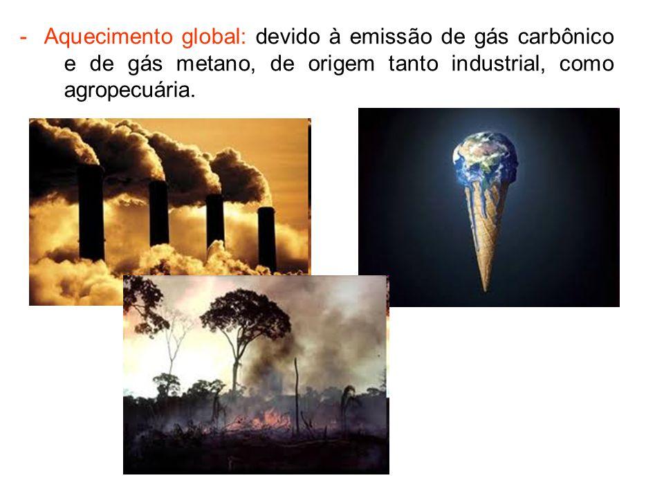 - Aquecimento global: devido à emissão de gás carbônico e de gás metano, de origem tanto industrial, como agropecuária.