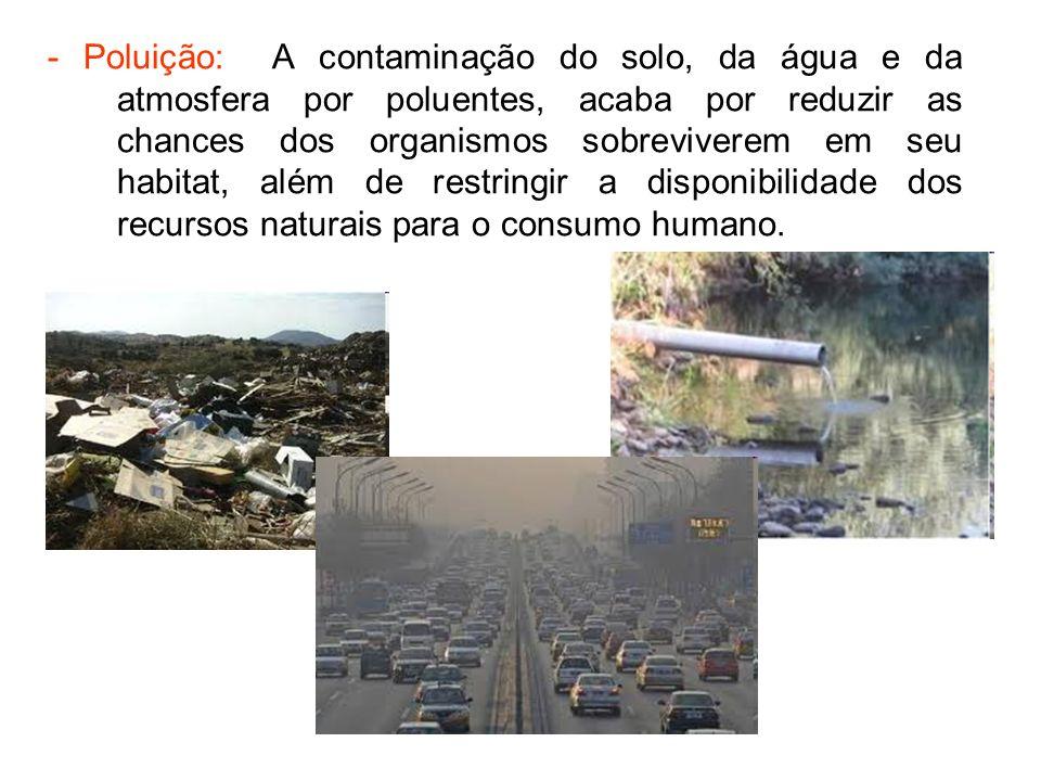 - Poluição: A contaminação do solo, da água e da atmosfera por poluentes, acaba por reduzir as chances dos organismos sobreviverem em seu habitat, além de restringir a disponibilidade dos recursos naturais para o consumo humano.