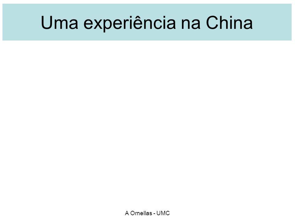 Uma experiência na China