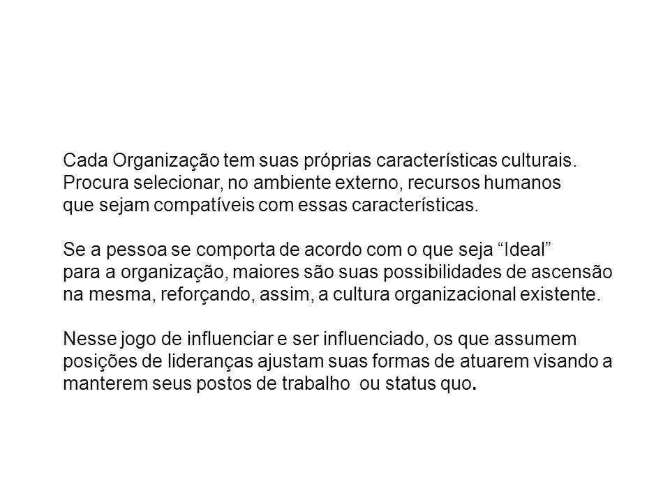 Cada Organização tem suas próprias características culturais.