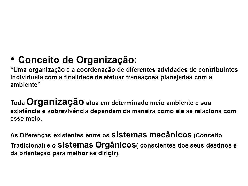 Conceito de Organização: