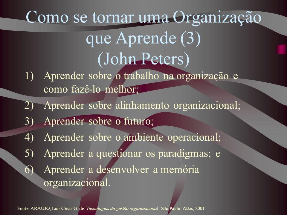 Como se tornar uma Organização que Aprende (3) (John Peters)