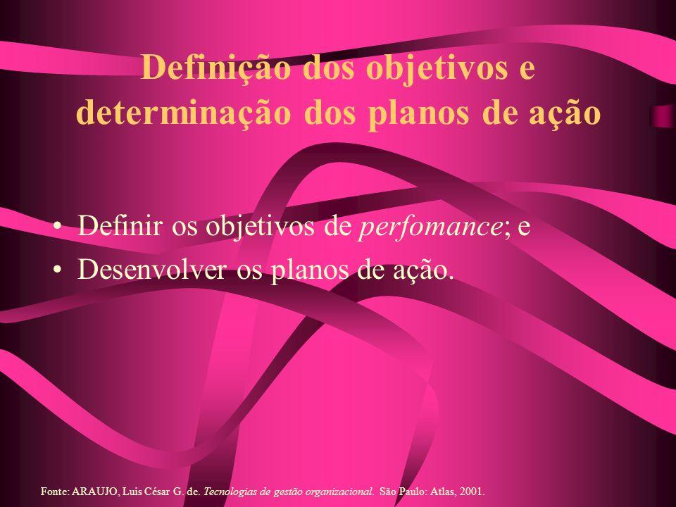 Definição dos objetivos e determinação dos planos de ação