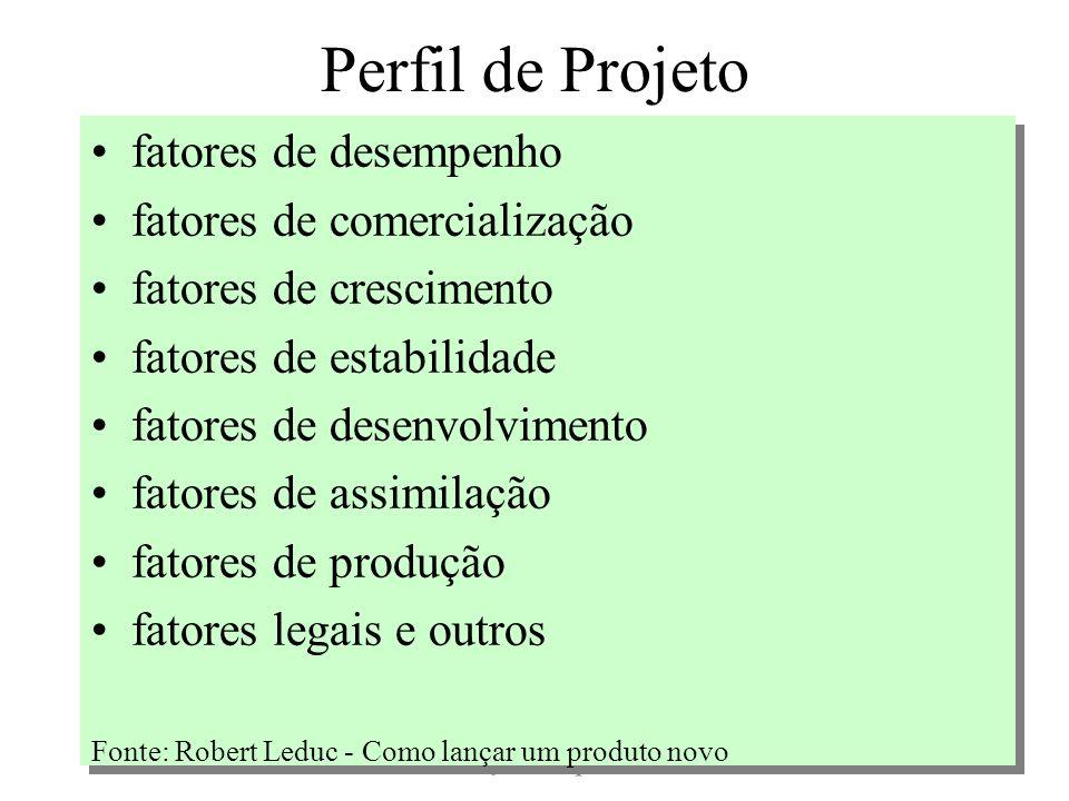 Perfil de Projeto fatores de desempenho fatores de comercialização