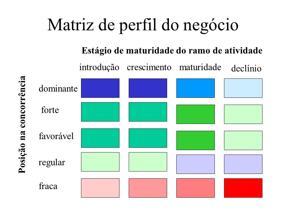 Matriz de perfil do negócio