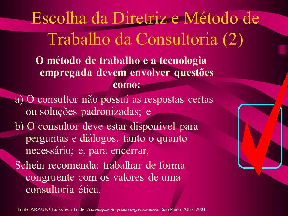 Escolha da Diretriz e Método de Trabalho da Consultoria (2)