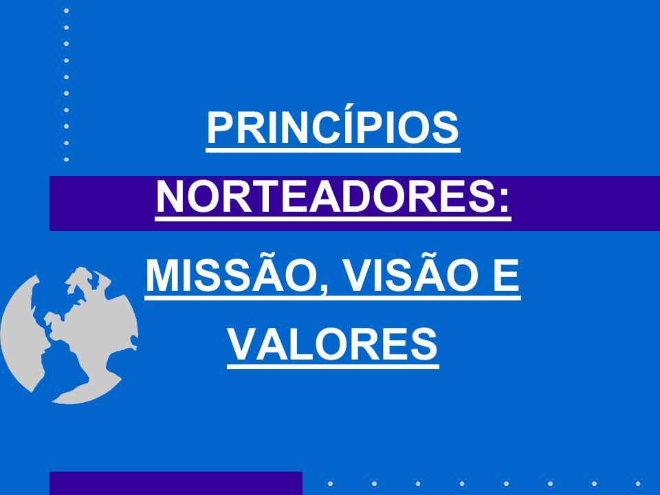 PRINCÍPIOS NORTEADORES: MISSÃO, VISÃO E VALORES