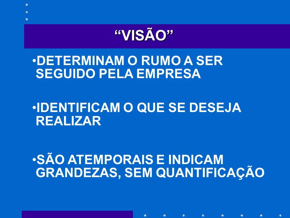 VISÃO DETERMINAM O RUMO A SER SEGUIDO PELA EMPRESA