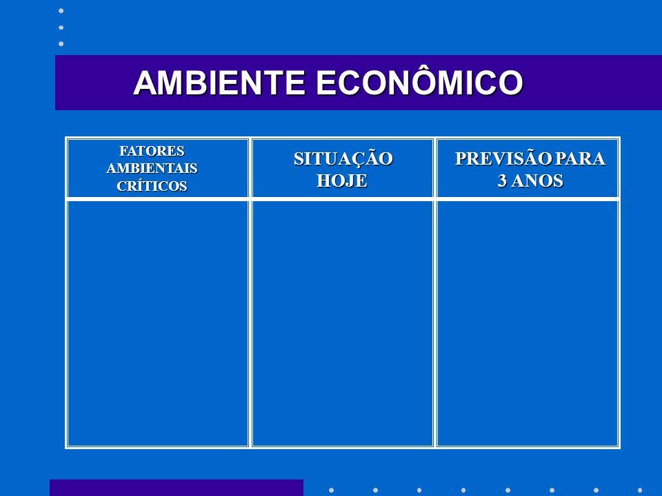 AMBIENTE ECONÔMICO SITUAÇÃO HOJE PREVISÃO PARA 3 ANOS FATORES