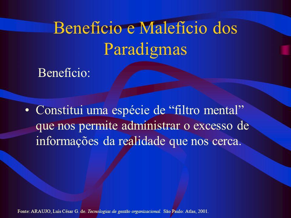 Benefício e Malefício dos Paradigmas