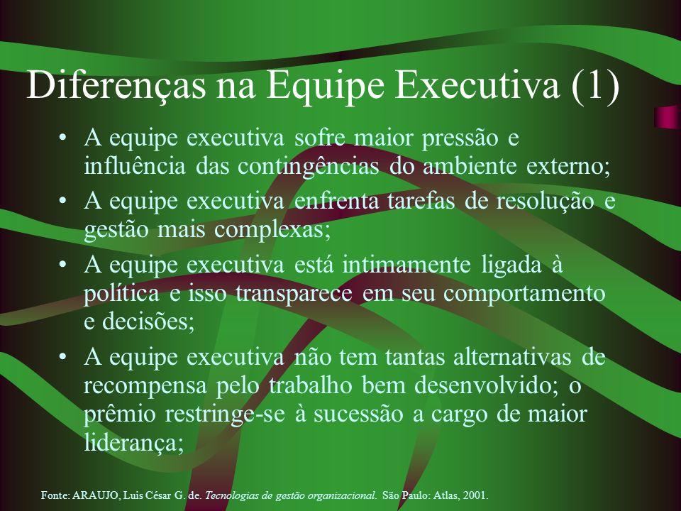 Diferenças na Equipe Executiva (1)