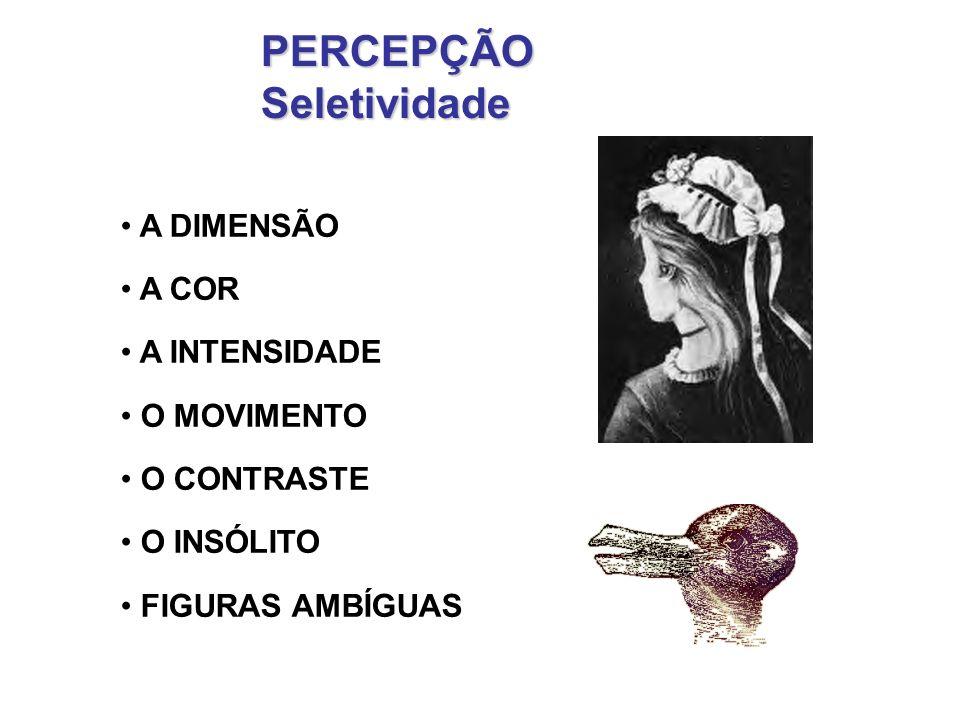 PERCEPÇÃO Seletividade A DIMENSÃO A COR A INTENSIDADE O MOVIMENTO
