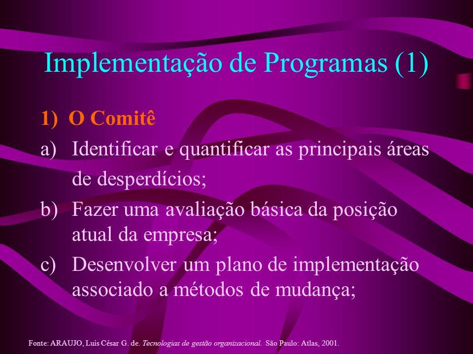 Implementação de Programas (1)