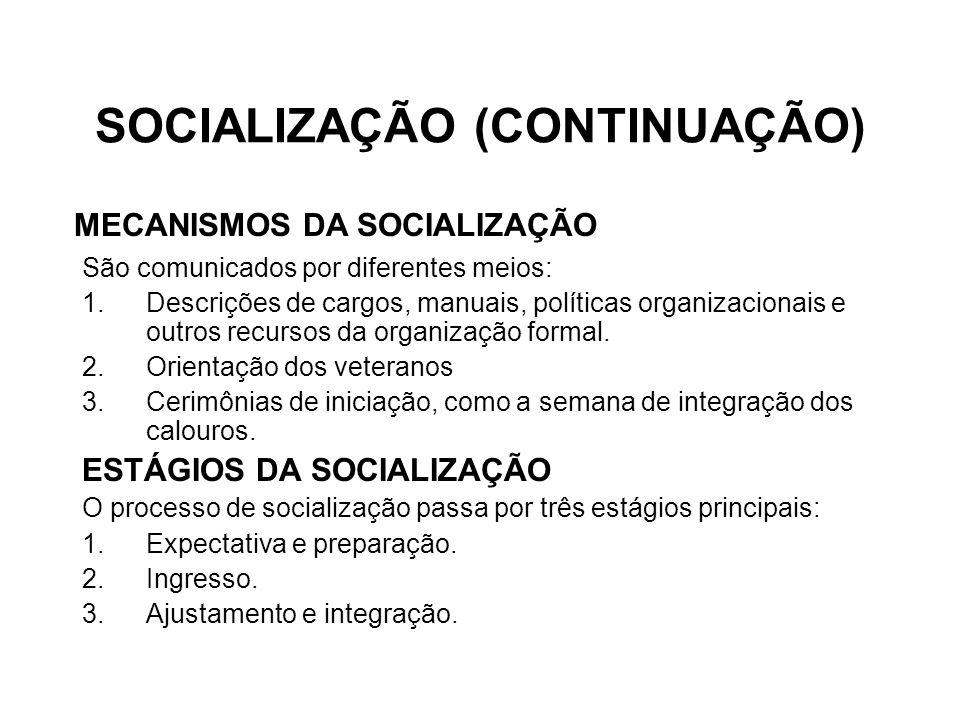 SOCIALIZAÇÃO (CONTINUAÇÃO)