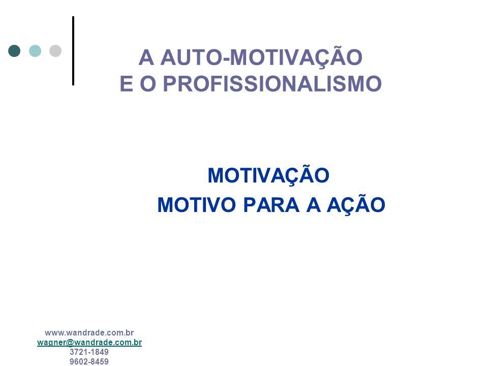 A AUTO-MOTIVAÇÃO E O PROFISSIONALISMO