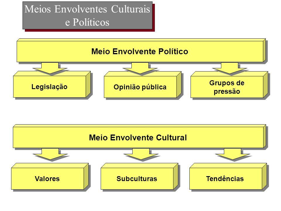 Meios Envolventes Culturais e Políticos