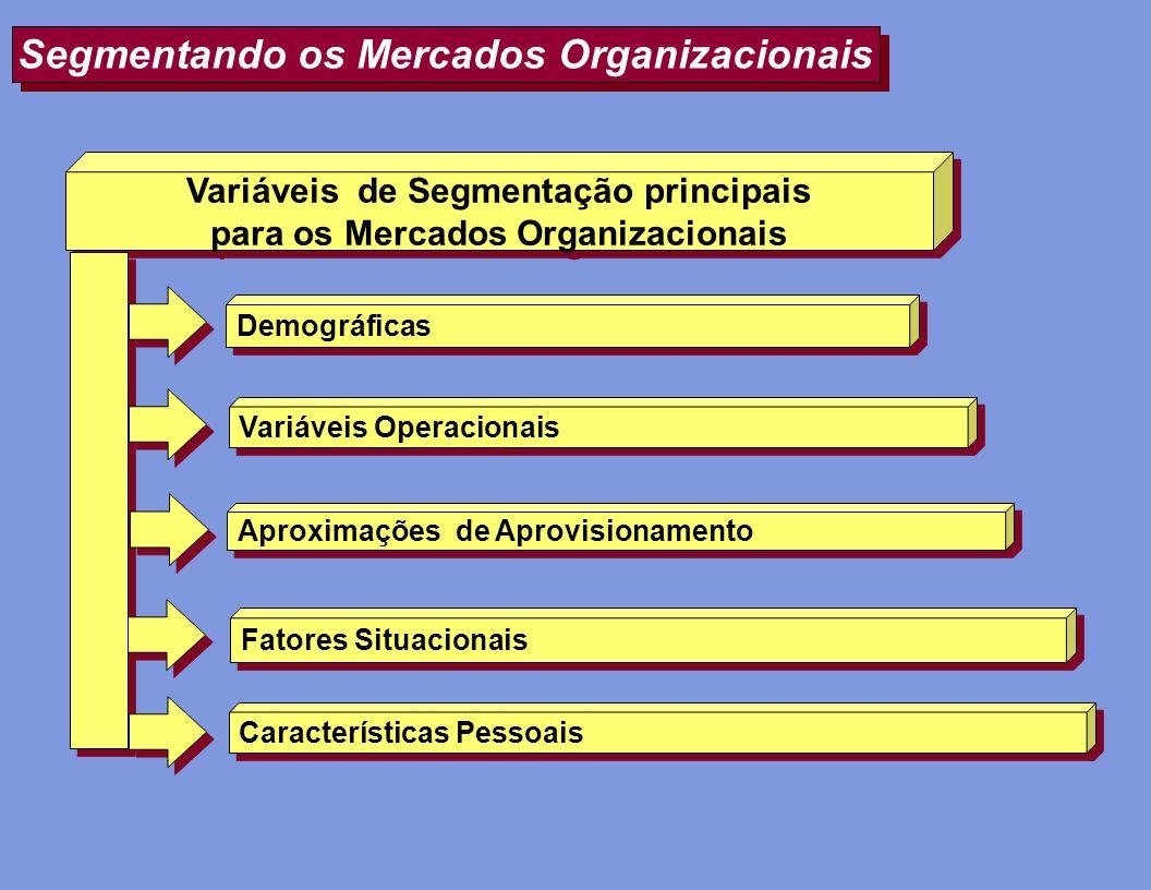 Segmentando os Mercados Organizacionais