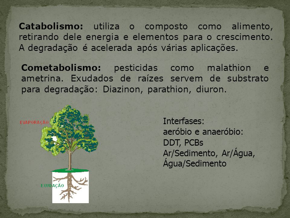 Catabolismo: utiliza o composto como alimento, retirando dele energia e elementos para o crescimento. A degradação é acelerada após várias aplicações.
