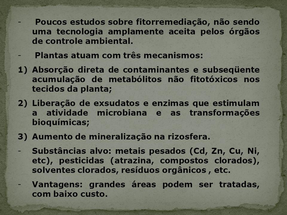 Poucos estudos sobre fitorremediação, não sendo uma tecnologia amplamente aceita pelos órgãos de controle ambiental.