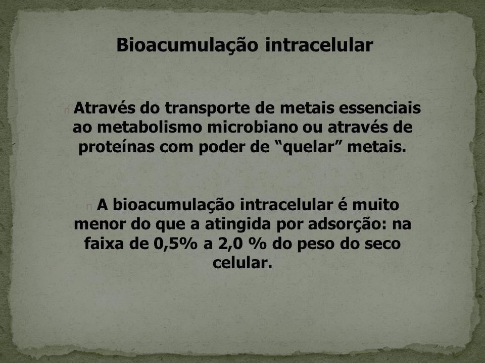 Bioacumulação intracelular