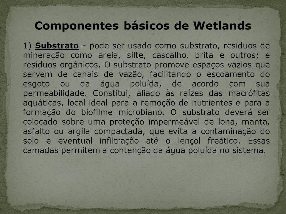 Componentes básicos de Wetlands