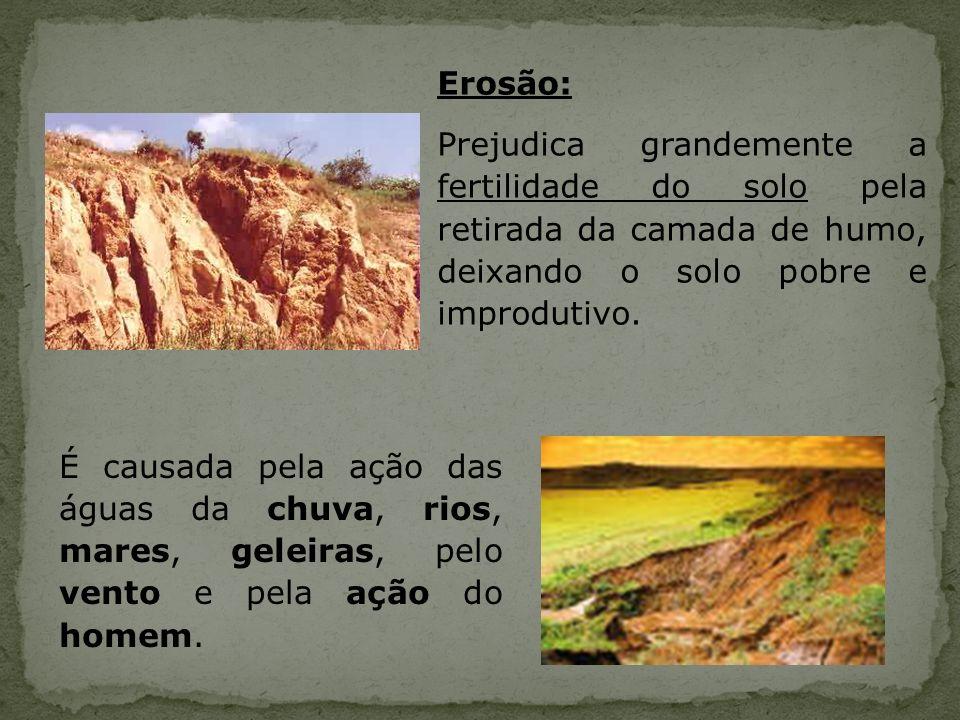 Erosão: Prejudica grandemente a fertilidade do solo pela retirada da camada de humo, deixando o solo pobre e improdutivo.