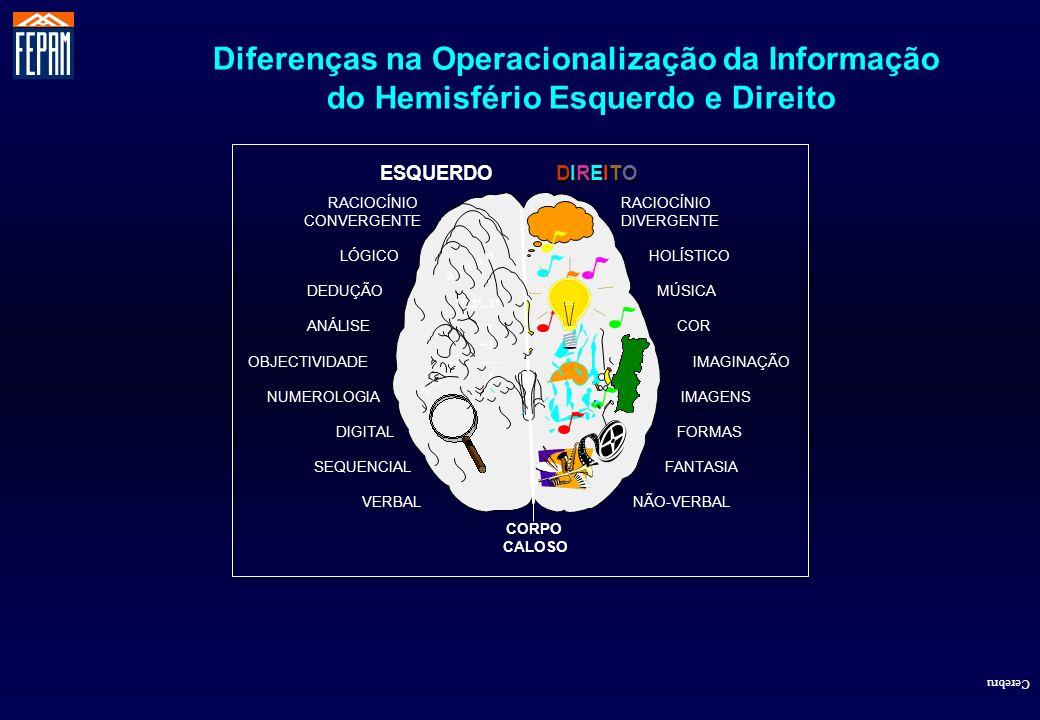 Diferenças na Operacionalização da Informação
