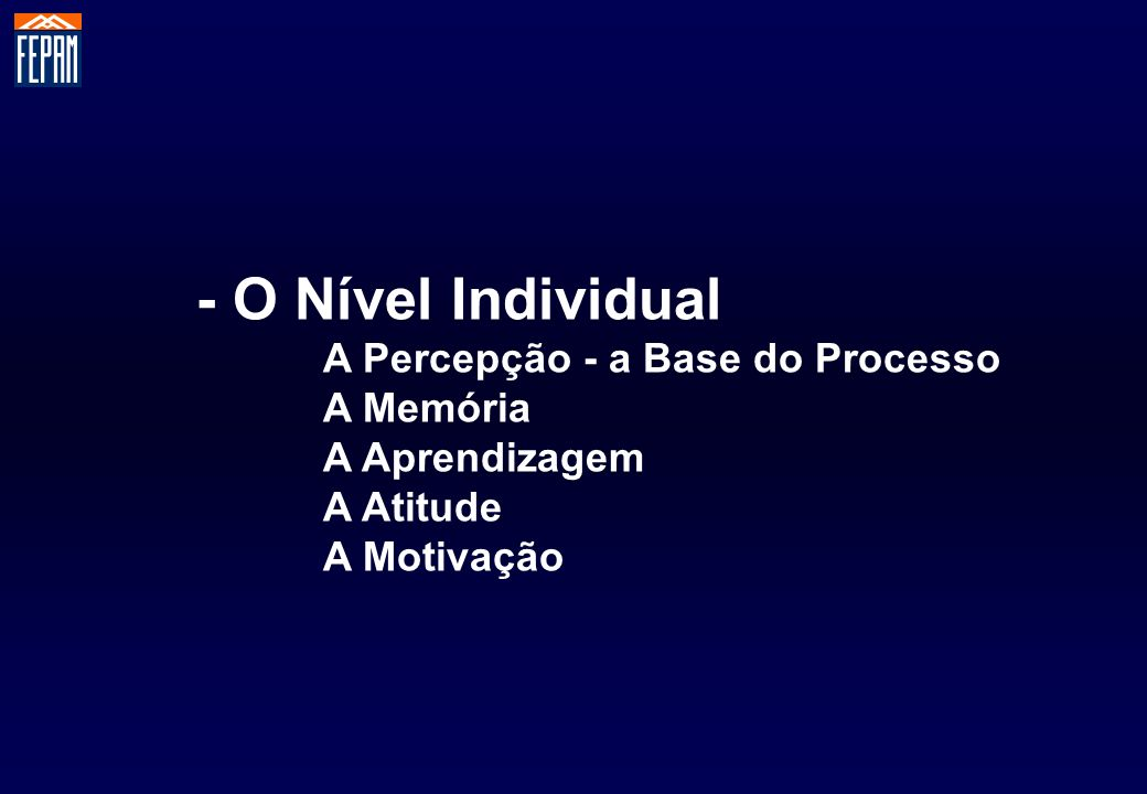 - O Nível Individual A Percepção - a Base do Processo A Memória