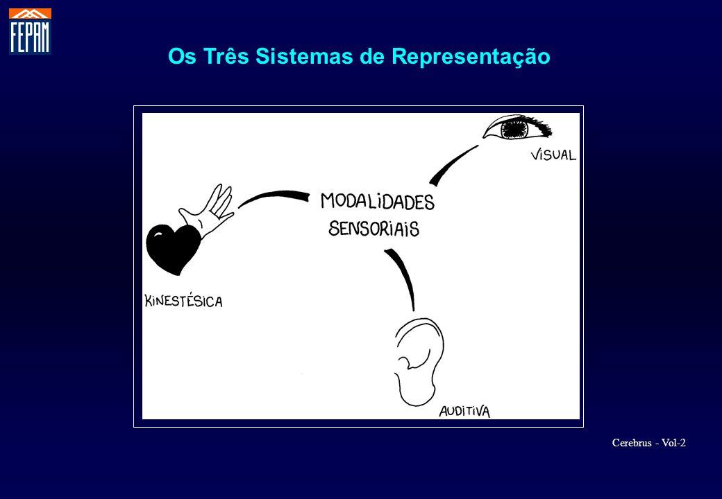 Os Três Sistemas de Representação
