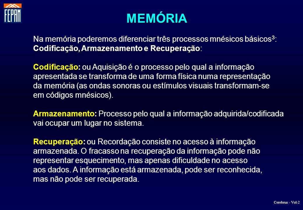 MEMÓRIA Na memória poderemos diferenciar três processos mnésicos básicos3: Codificação, Armazenamento e Recuperação: