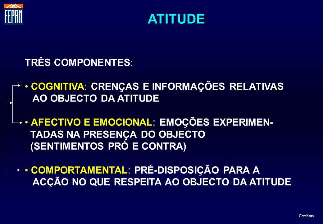 ATITUDE TRÊS COMPONENTES: COGNITIVA: CRENÇAS E INFORMAÇÕES RELATIVAS