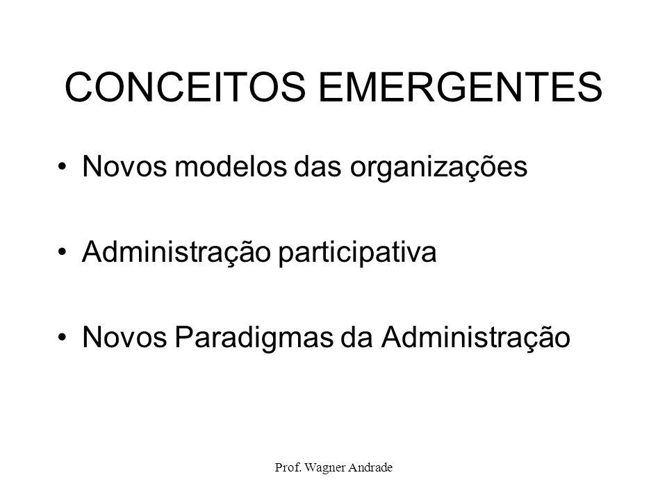 CONCEITOS EMERGENTES Novos modelos das organizações
